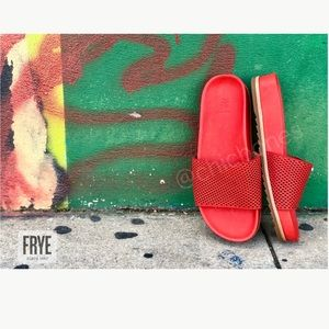 New FRYE Lily Perforated Leather Slides Sandals